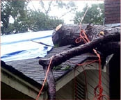 24 Hour Emergency Huricane and Wind Damage Services