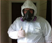 Mold Remediation and Removal Services